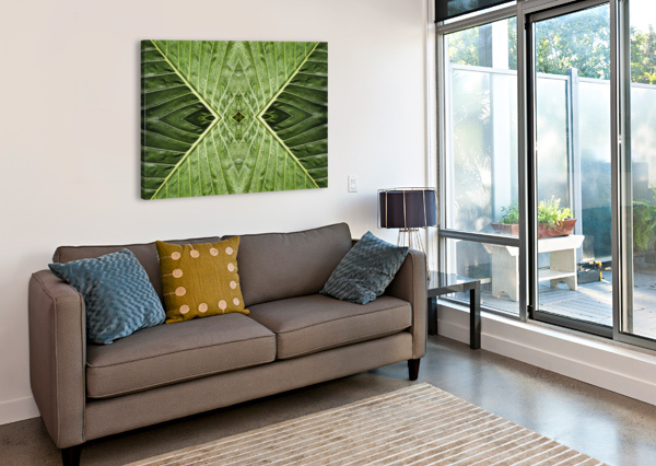 CLOSE UP OF VEIN PATTERNS IN LEAVES;GOLD COAST QUEENSLAND AUSTRALIA PACIFICSTOCK  Canvas Print