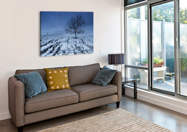 COLD BLUE TREES, YORKSHIRE DALES, UK STEVE THOMPSON SUNSTORMPHOTOGRAPHY  Canvas Print