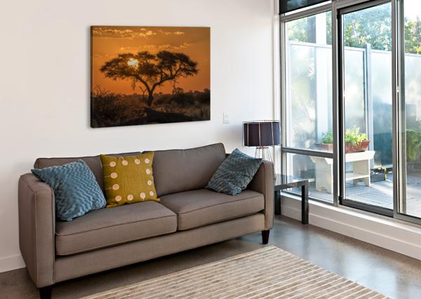 SILHOUETTE OF ACACIA TREE AT ORANGE SUNSET; BOTSWANA PACIFICSTOCK  Canvas Print