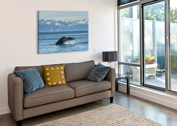 HUMPBACK WHALE (MEGAPTERA NOVAEANGLIAE) IN SEWARD HARBOUR; SEWARD, ALASKA, UNITED STATES OF AMERICA PACIFICSTOCK  Canvas Print