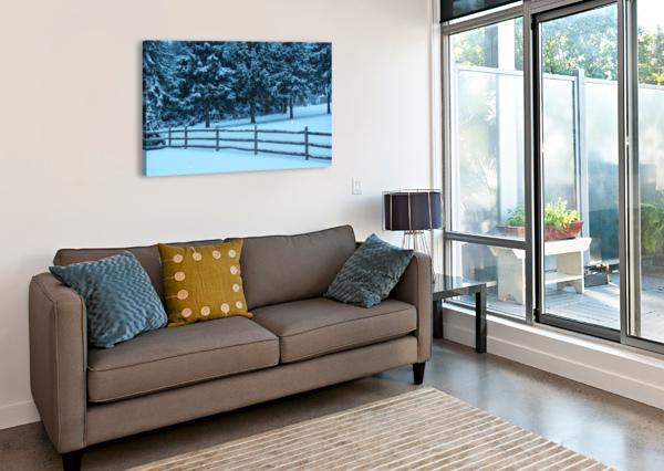 WINTER SNOW FIVE14PHOTOGRAPHY  Canvas Print