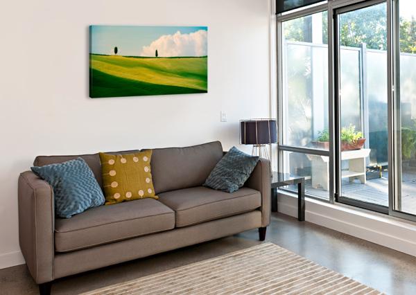 TUSCANY CURVES FABIEN DORMOY  Canvas Print