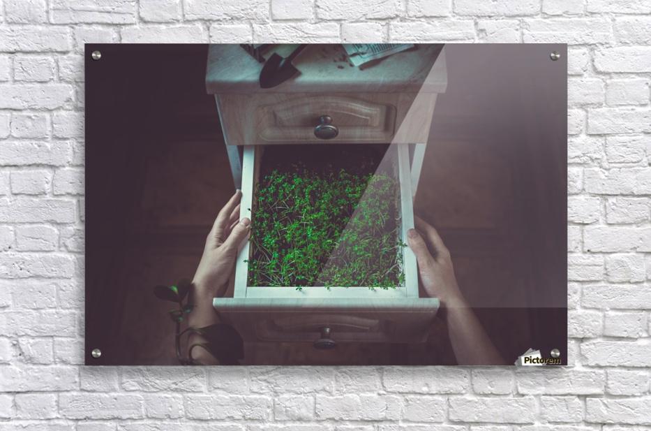 Avoir la main verte  Acrylic Print