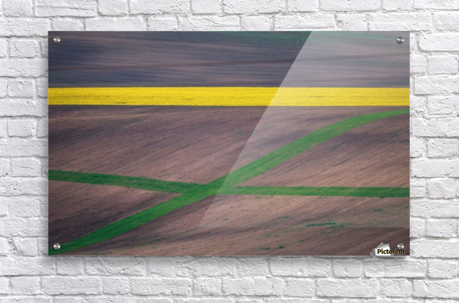 Painting the fields  Acrylic Print
