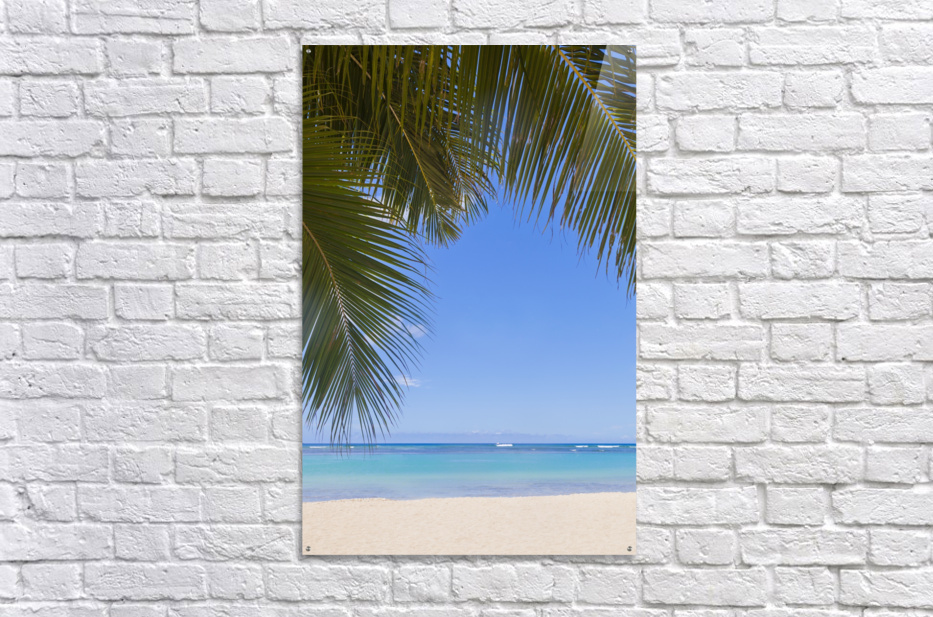 Beautiful clear day on a white sandy beach with coconut palm tree fronds hanging above; Honolulu, Oahu, Hawaii, United States of America  Acrylic Print