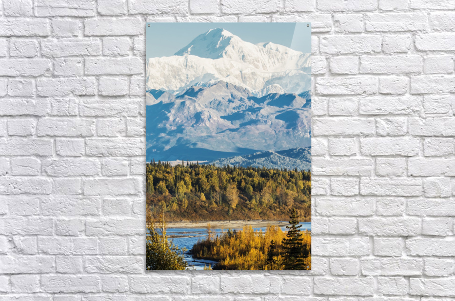Denali, viewed from the Parks Highway, interior Alaska, near South Viewpoint rest stop; Alaska, United States of America  Acrylic Print