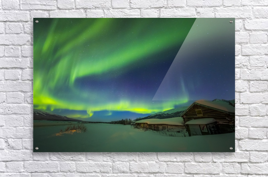 The aurora fills the sky above the historic Black Rapids Roadhouse along the Richardson Highway on a bitterly cold night; Alaska, United States of America  Acrylic Print
