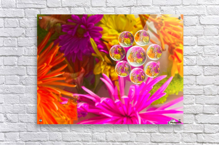 FLOWERS REFRACTION 12  Acrylic Print