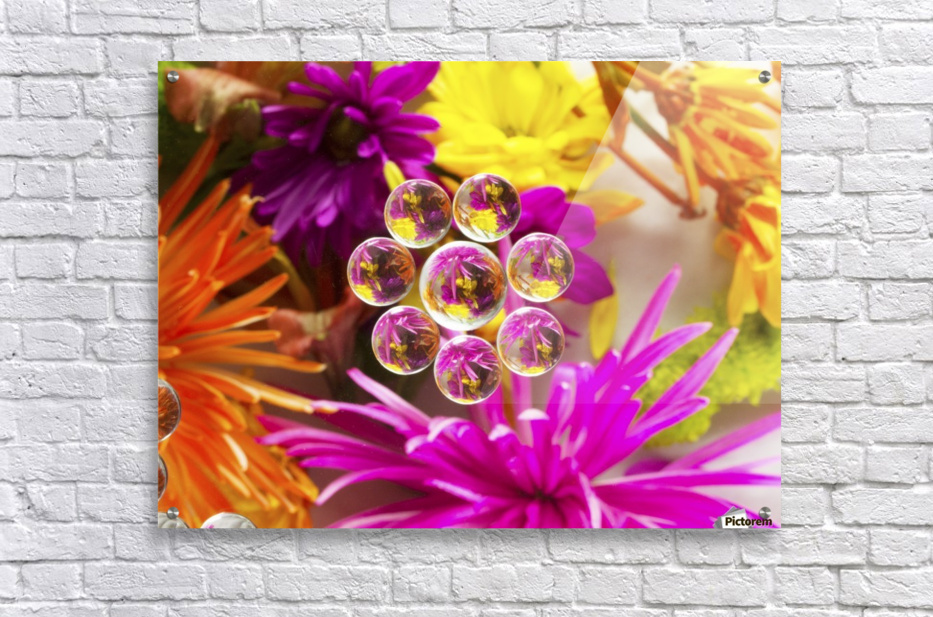 FLOWERS REFRACTION 9  Acrylic Print