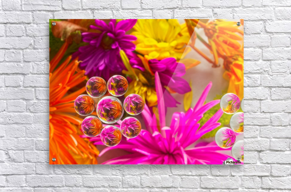 FLOWERS REFRACTION 10  Acrylic Print