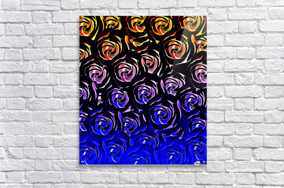 rose pattern texture abstract background in blue and red  Acrylic Print