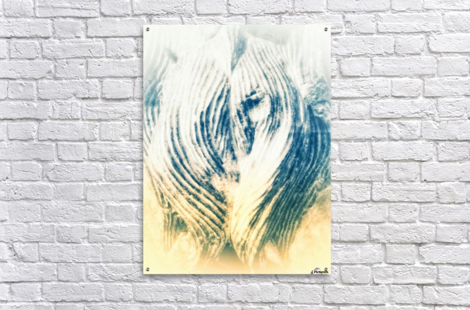 IMG_20170928_151706 01 01 02 01 021  Acrylic Print