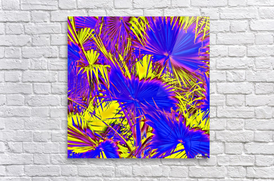 closeup palm leaf texture abstract background in blue pink and yellow  Acrylic Print