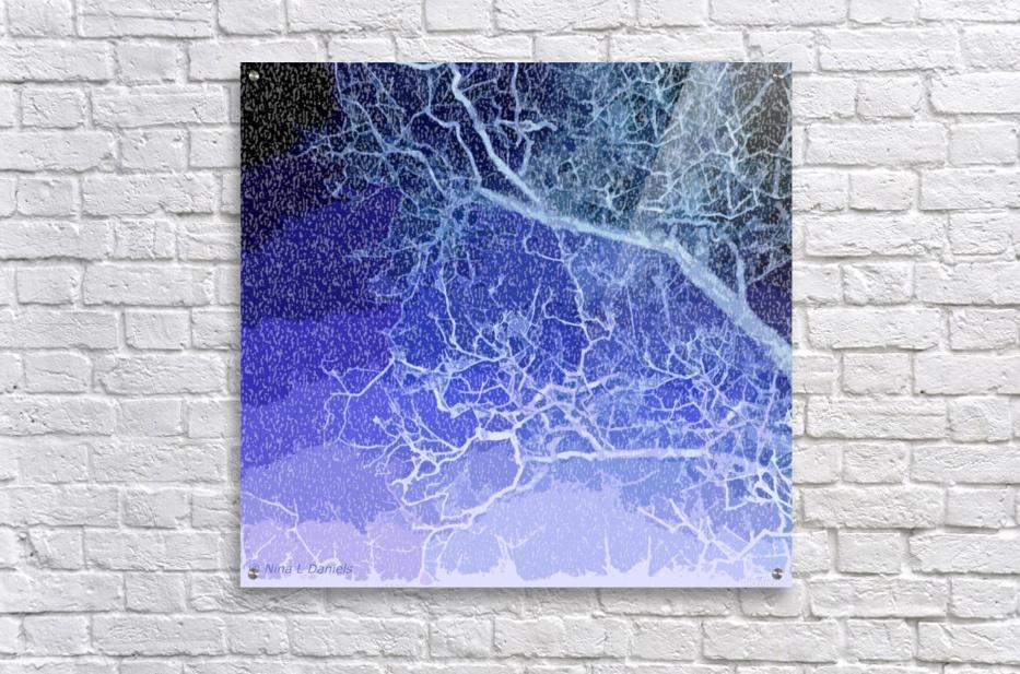 TreeBranches2  Acrylic Print
