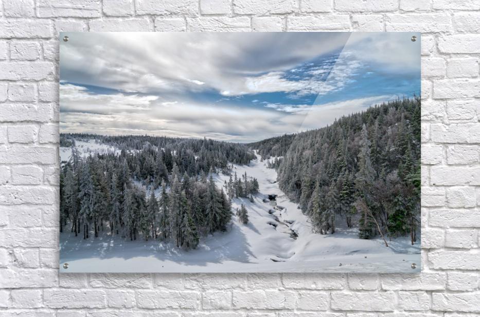 A Boreal Winter  Acrylic Print