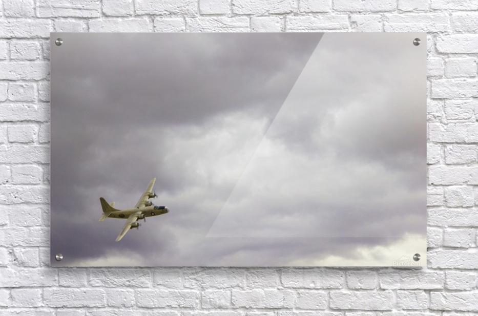 Flyingwarbird  Acrylic Print