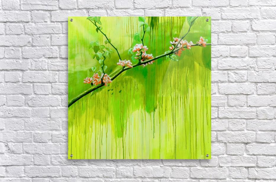 Green Spring  Acrylic Print