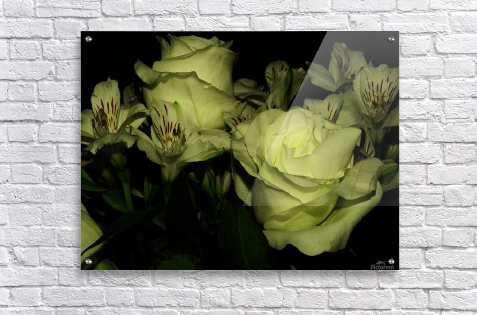 D (3)  Acrylic Print