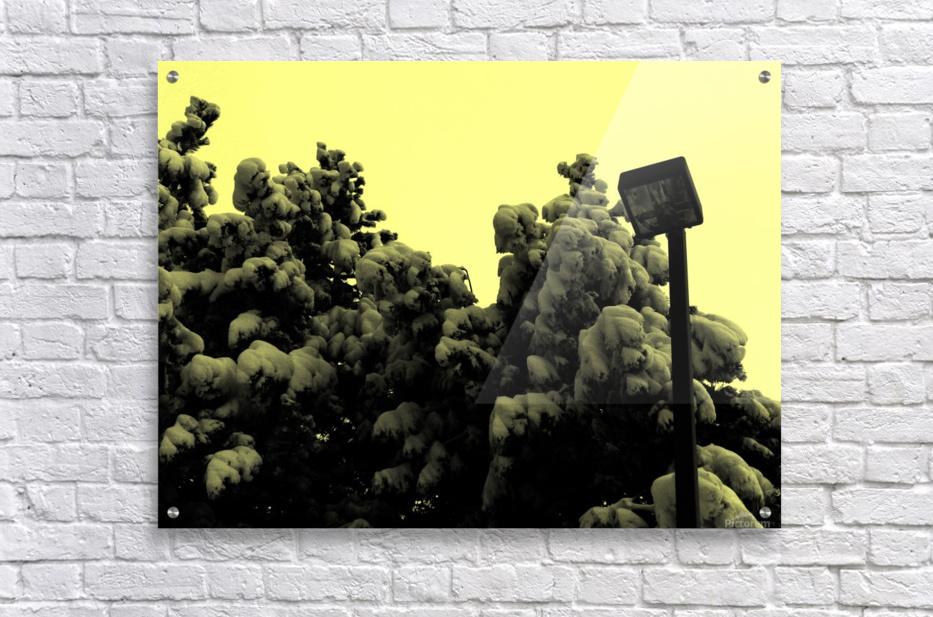 D (10)  Acrylic Print