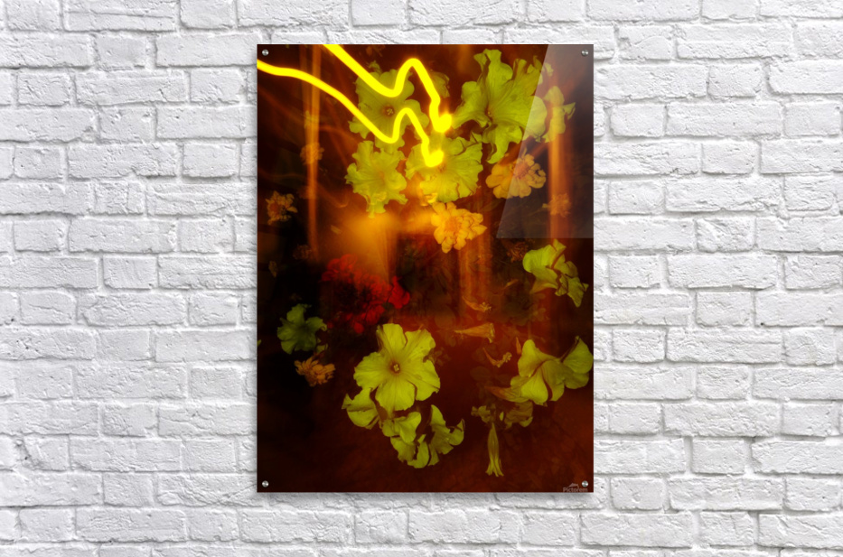 E (12)  Acrylic Print
