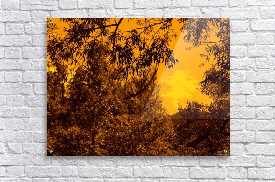 G (12)  Acrylic Print