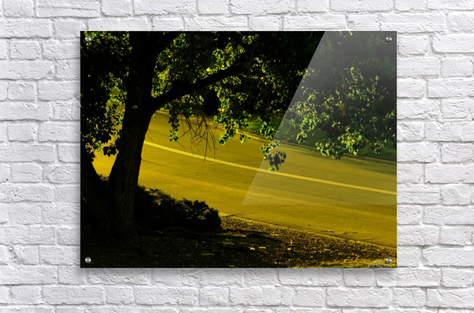 H (14)  Acrylic Print