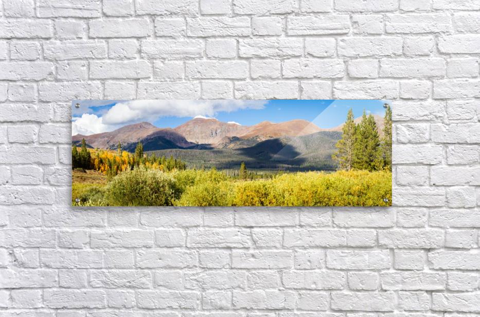 North Park Colorado   Acrylic Print