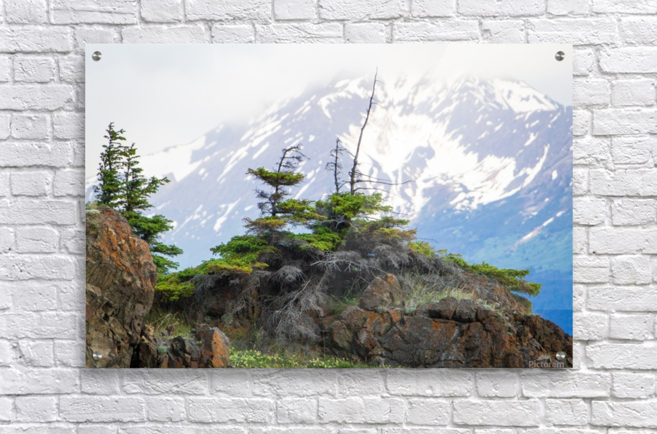 Alaska Scenery Pictures - Cliffs and Mountains  Acrylic Print