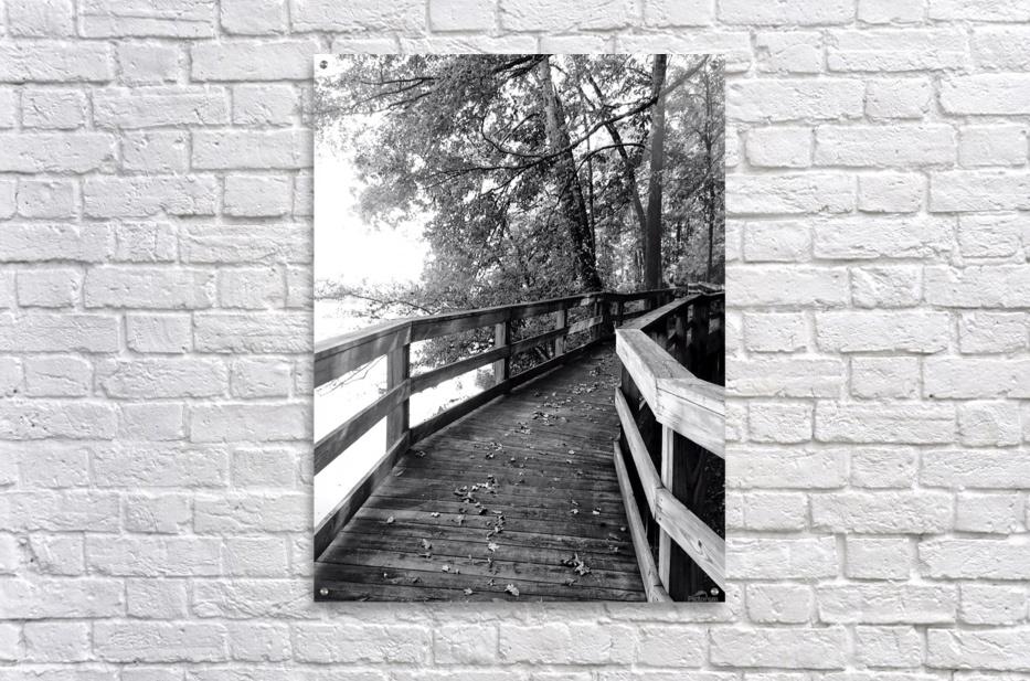 Walkway  Acrylic Print