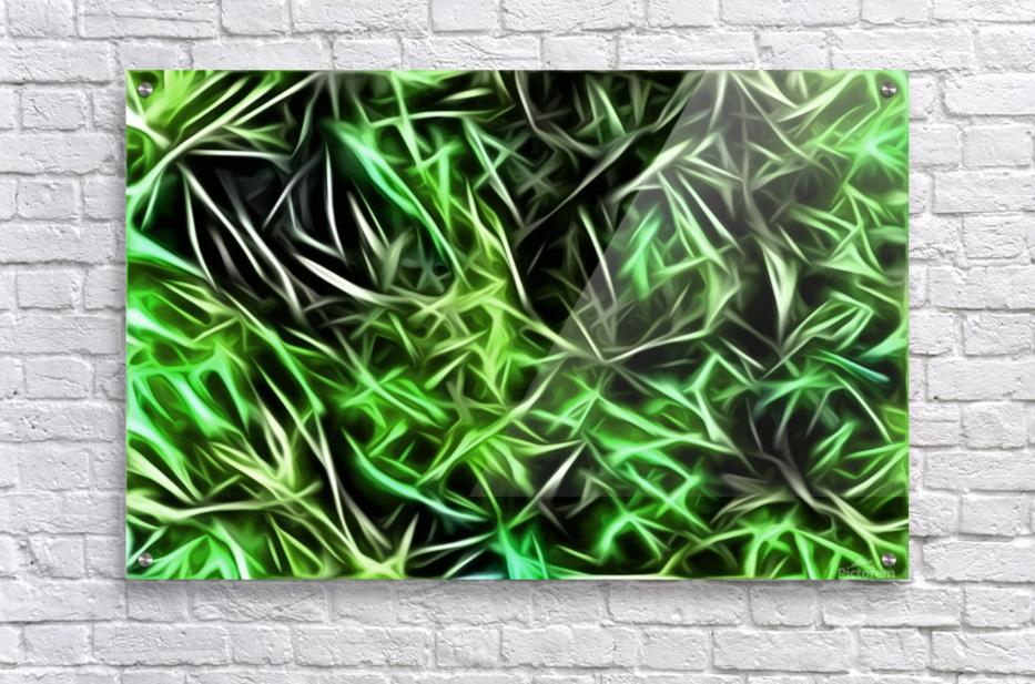 Interdigitate  Acrylic Print