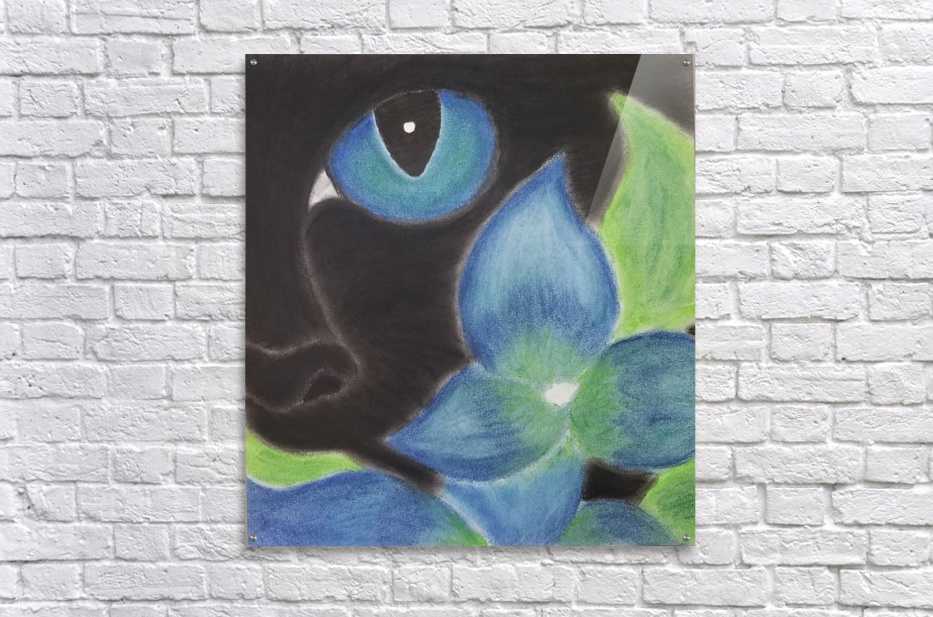 Mystery Cat  Acrylic Print