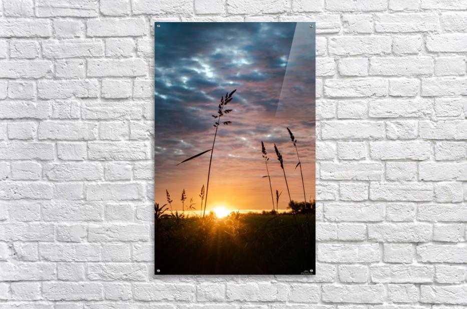First Light  Acrylic Print