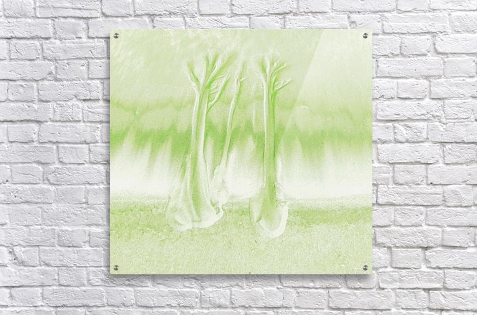 20180912_100119  Acrylic Print