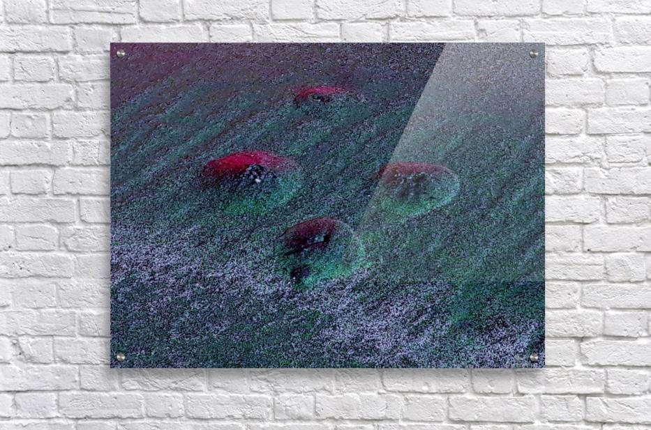 20180916_204111  Acrylic Print