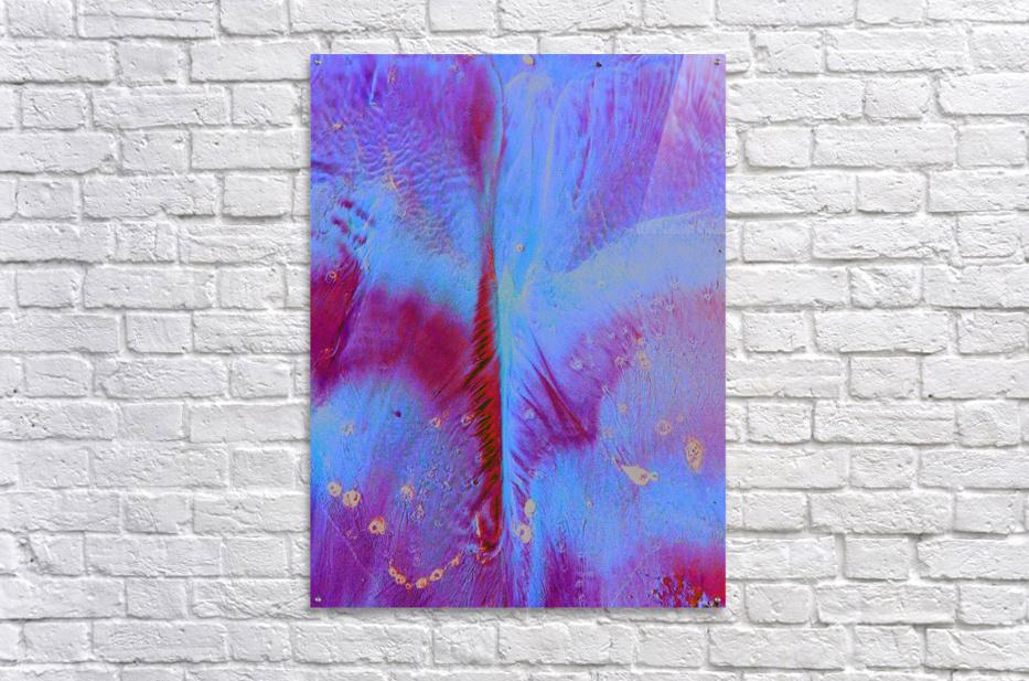 20180918_153151  Acrylic Print