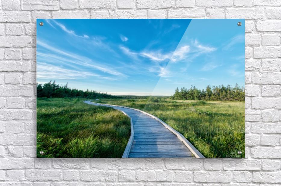 A walk at the Bog  Acrylic Print