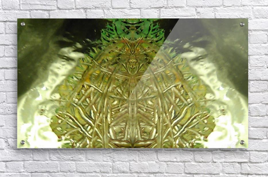 1539056797847  Acrylic Print