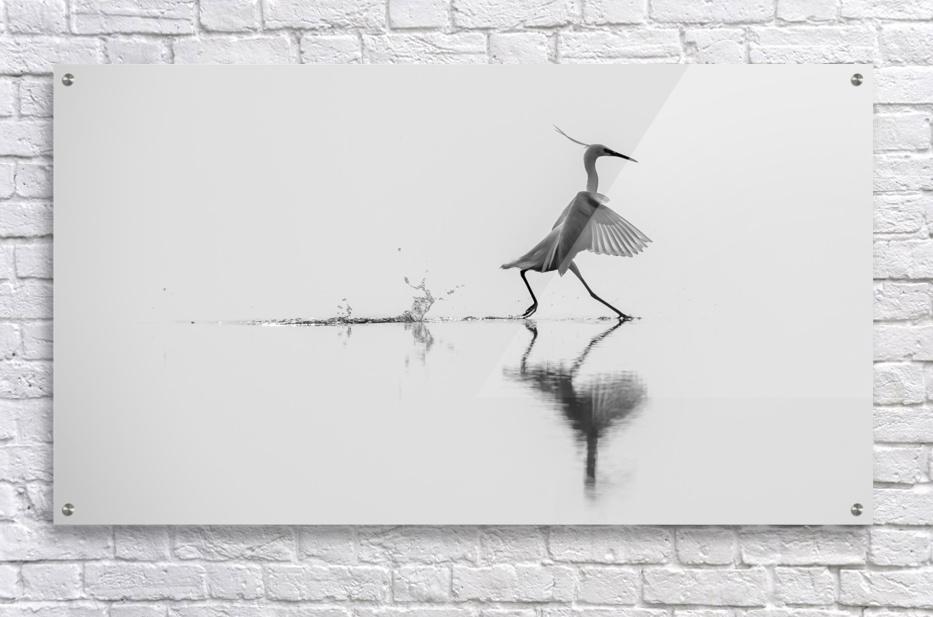 Dancing on the water  Acrylic Print