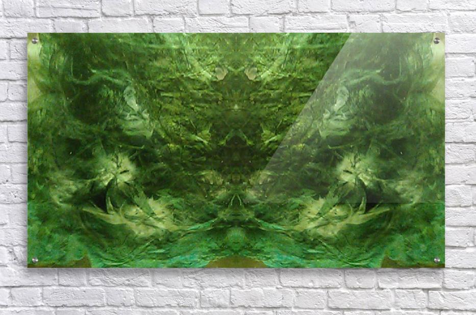 1539910351967  Acrylic Print