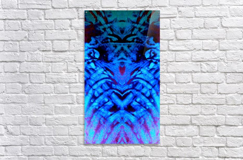 1541255071569~2  Acrylic Print