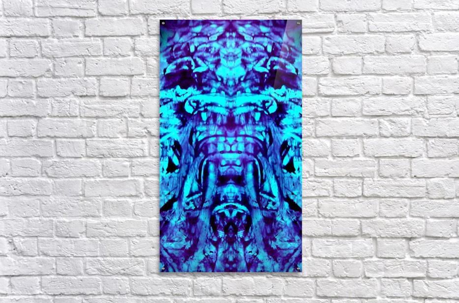 1541251774043~2  Acrylic Print