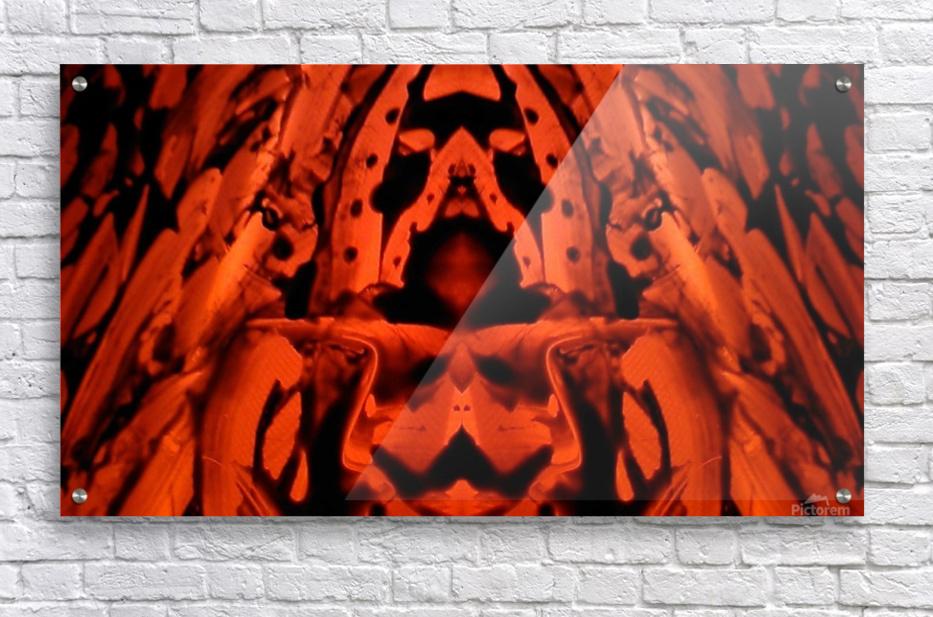 1542082237300  Acrylic Print