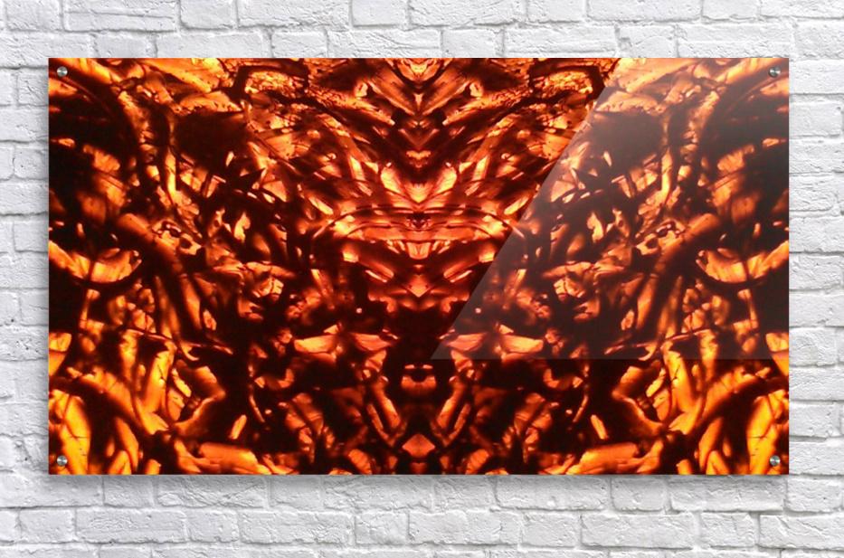 1542381772287_1542384424.21  Acrylic Print