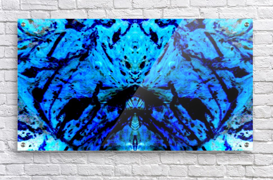 1546578800640  Acrylic Print