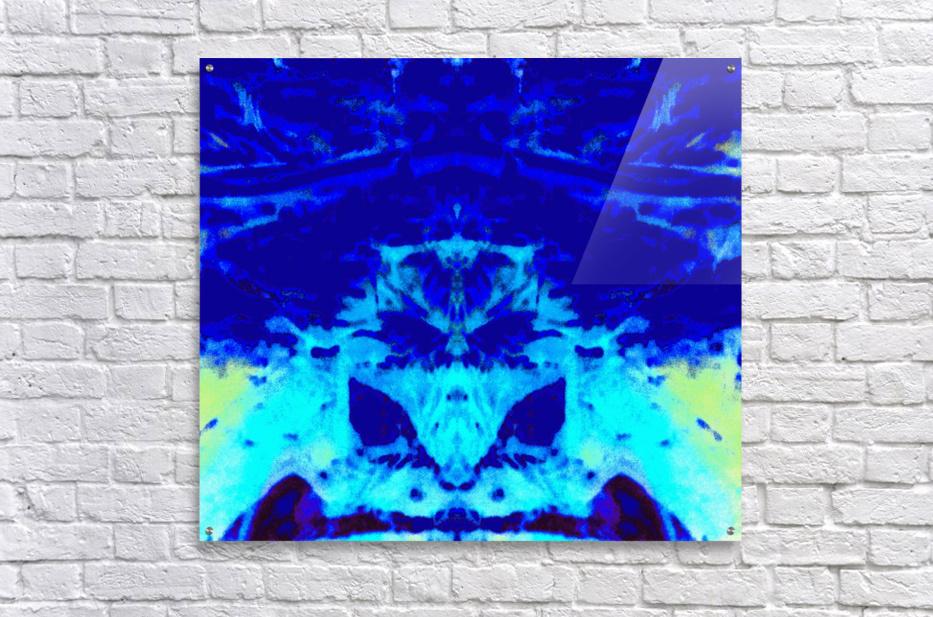 1547146661999_1_1547214772.01  Acrylic Print