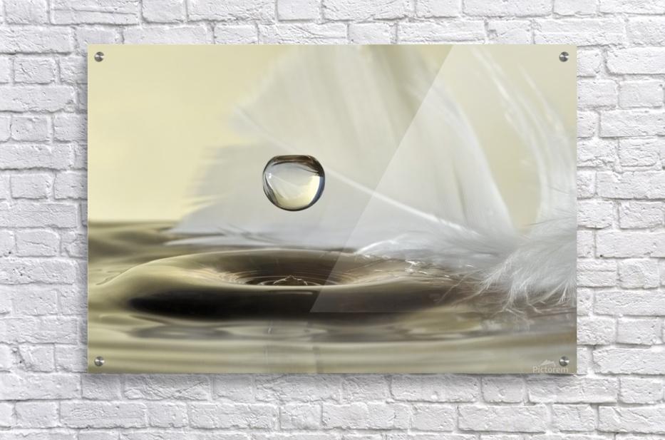 Feathers drop  Acrylic Print