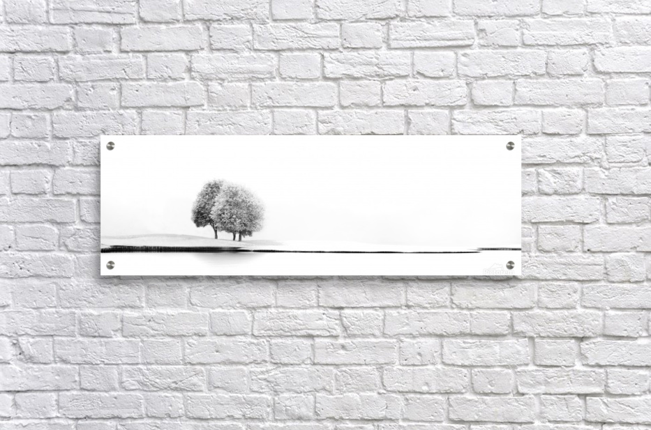 United 2  Acrylic Print