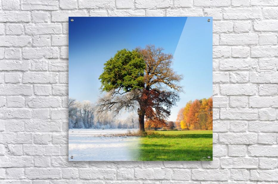 4 seasons  Acrylic Print