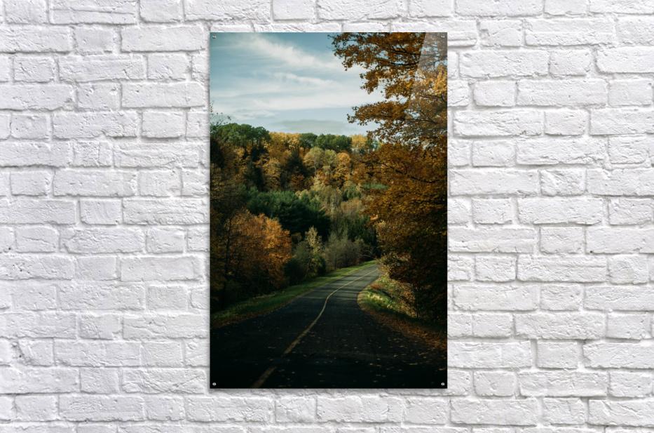 Route dautomne  Impression acrylique