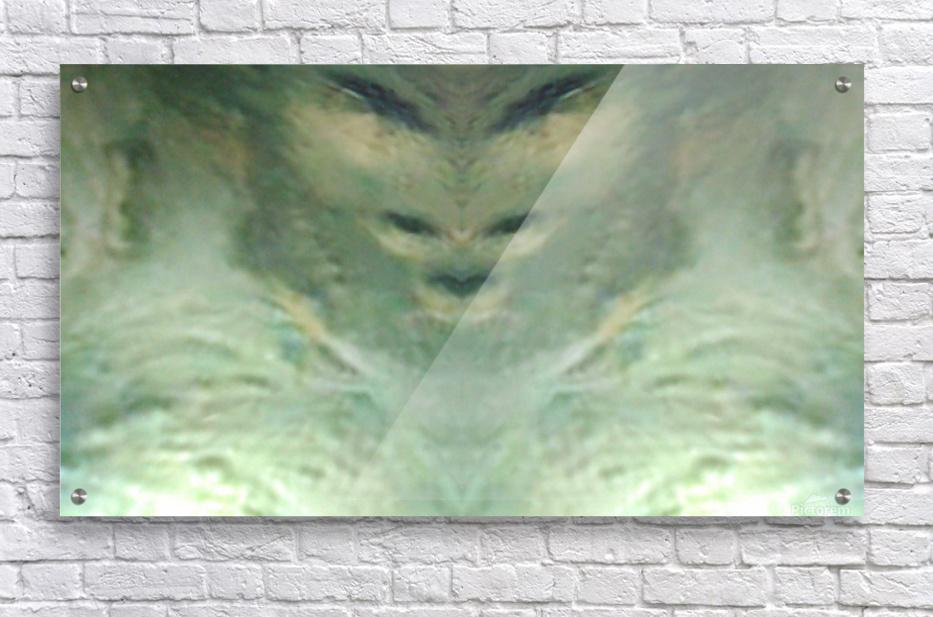 1548132183050  Acrylic Print